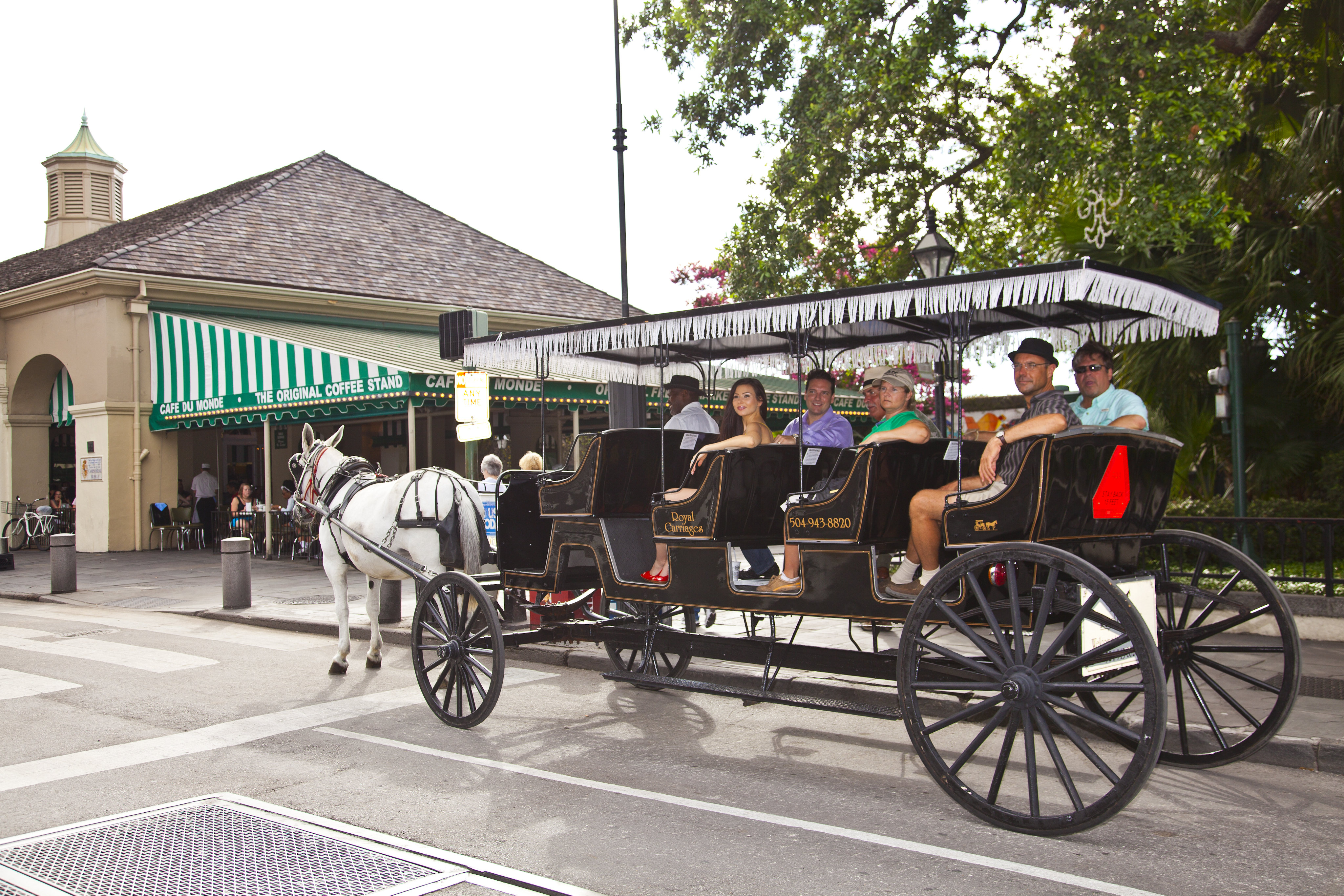 french quarter carriage ride royal carriages tours. Black Bedroom Furniture Sets. Home Design Ideas
